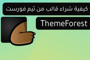 كيفية شراء قالب من ثيم فورست ThemeForest بالطريقة الصحيحة